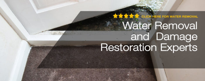 Ft Myers Water Restoration Service- Servpro, water damage restoration, fire damage restoration, mold remediation inspection- 81-We do home restoration services like Servpro such as water damage restoration, water removal, mold removal, fire and smoke damage services, fire damage restoration, mold remediation inspection, and more.